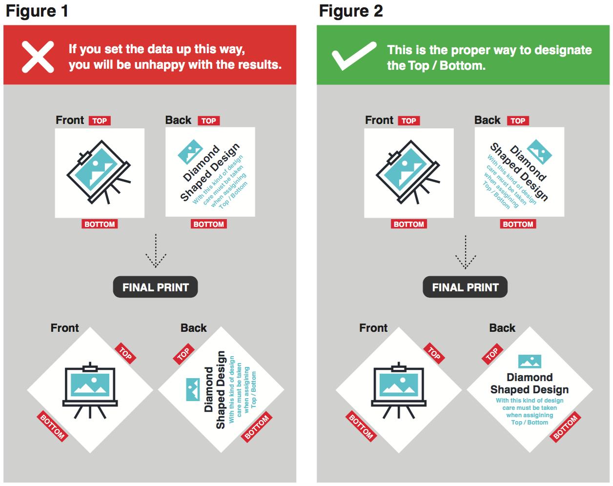 Orientation - Front & Back Data Orientation 02 Image